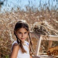 В пшеничном поле.. :: Екатерина Overon