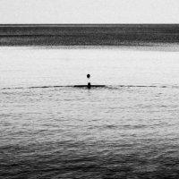 Утренний заплыв :: Беспечный Ездок