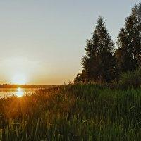 августовское тепло :: Galina