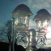 Солнечные фонари :: Дмитрий Ерохин