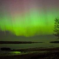 Aurora borealis. Северное сияние над Ригой 2015 :: Ольга Блум