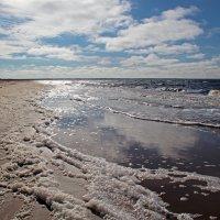 Северодвинск. Летний берег Белого моря. Пена морская :: Владимир Шибинский