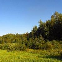 Лето еще! :: Андрей Лукьянов