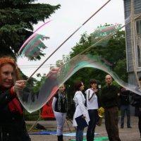 Парад  мыльных  пузырей. :: Валерия  Полещикова