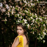 Загадочная Мирия :: Анна Кадулина-Новоселова