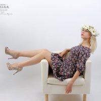 Ромашки :: Светлана Краснова