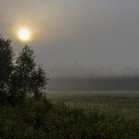 Туман поднимается :: Анатолий Иргл