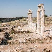 ворота античного города Иерополис в Памуккале :: Андрей ЕВСЕЕВ
