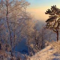 Утро одного зимнего дня :: И.В.К. ))