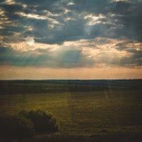 пейзаж :: Анастасия .