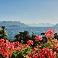Утро на озере Лаго-Маджоре (север Италии) :: Андрей Крючков