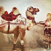 Фотография с верблюдом :: Olga Zhukova