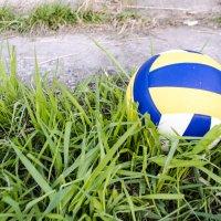 Мяч :: Виктория Большагина