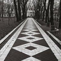 Дорожки Мариинского парка-ІІ. :: Андрий Майковский
