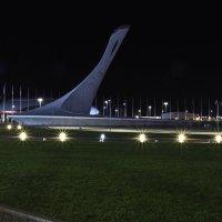 Олимпийский парк Сочи :: Владимир Д