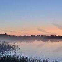 Туман над озером :: Андрей Беспалов