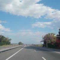 Дорога. :: Евгения Мельникова