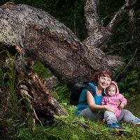 в лесу :: Роман Прос