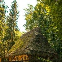 Украинский домик :: Алексей Романенко