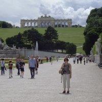 Шенбрун, дворцовый парк (Вена) :: Юрий Поляков