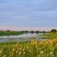 Устье реки :: Anton Сараев