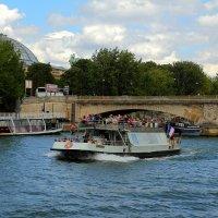 Мост через реку Сена. :: Людмила Шнайдер