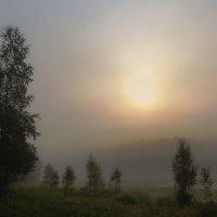Туманное утро :: Анатолий Иргл