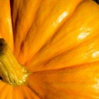 Оранжевое чудо :: Елизавета Егорова