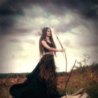 Душа погибшего леса :: Вилена Романова
