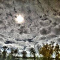 отражение в воде :: Marina Pelymskaya