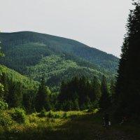 en route :: Диана Назарук
