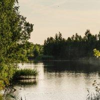 Вечернее озеро...... :: Елена Фролкова