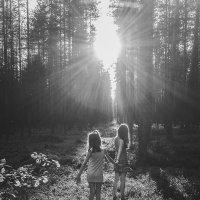 В лесу :: Анна Олейник