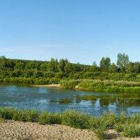 перекатик на реке Чумыш :: Николай Мальцев