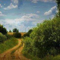 Пока свежа дорога в лето... :: Юрий