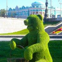 Зеленый медведь :: Eugen Pracht