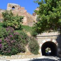 Крепость Алькасаба :: Ольга
