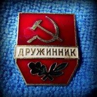 Дружинник :: Андрей Заломленков