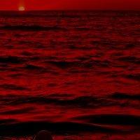 Red sunset. :: krivitskiy Кривицкий