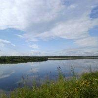 Вид на реку Вымь :: Николай Туркин