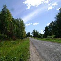 Просто дорога.... :: Марина Домосилецкая