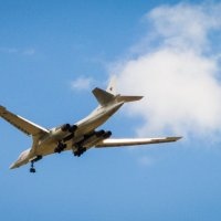 Белый лебедь идет на посадку... :: Владимир Сквирский
