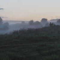 Утро туманное... :: Дмитрий Чулков