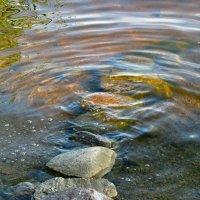 Живая вода :: Наталья