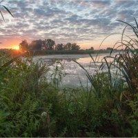 Утром на озере :: Николай Алехин