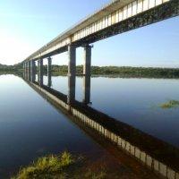 Вид на автомобильный мост через Вымь ранним утром. :: Николай Туркин