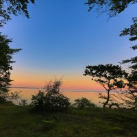 Лес и море :: Марат Макс