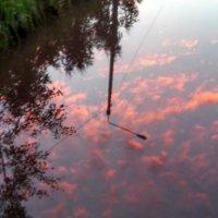 В лужу смотрятся облака... :: Елена Байдакова