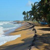 Шри Ланка. Индийский океан :: Ирина Н