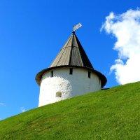 Смотровая башня :: Kristin Minasova